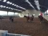 Paardenkamp(8)