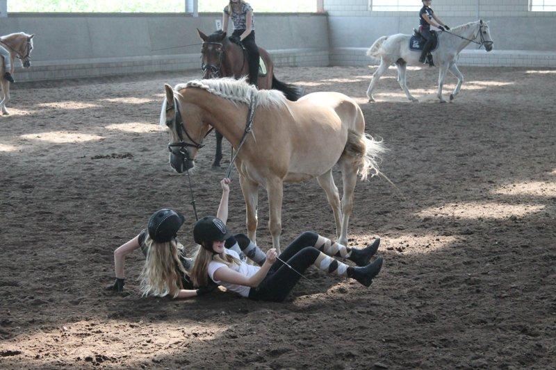 ponykamp-07