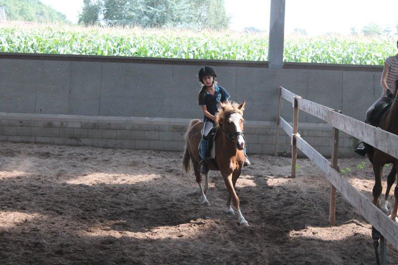 ponykamp-08