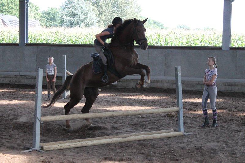 ponykamp-66
